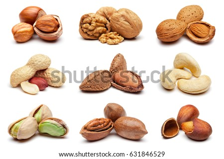 Set of various nuts isolated on the white background. Сток-фото ©