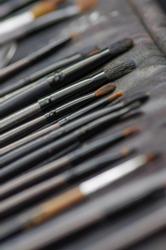Set of various professional female cosmetics brushes for makeup and eyelash brush isolated on black background, cosmetics concept