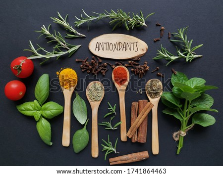 Set of various spices in wooden spoons and fresh herbs rich in antioxidants. Natural sources of antioxidants rosemary twigs, fresh green basil leaf, mint leaf, turmeric, clove, cinnamon, chili, tomato Сток-фото ©
