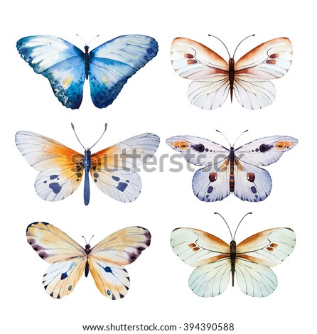 set of watercolor butterfly....