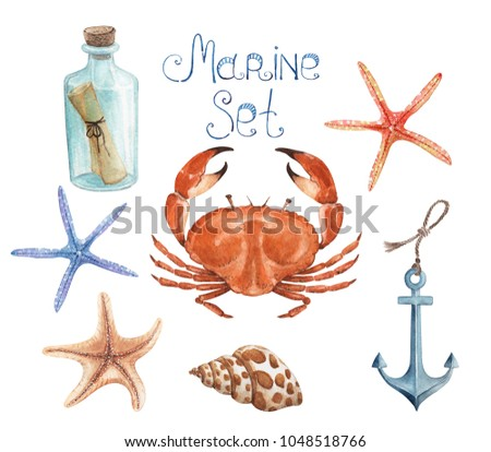 set of watercolor drawings in a marine style on a white background, from objects and marine life