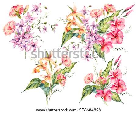 set of watercolor tropical...