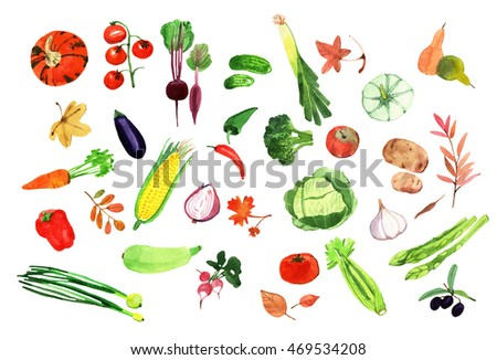 set of watercolor vegetables template for your design ez canvas