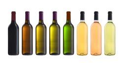 set of wine bottles isolated on a white background