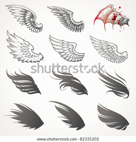 set of wings  vector version