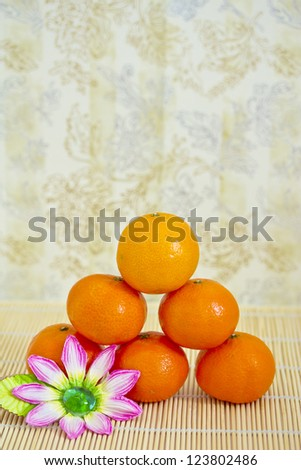 set of winter clementine