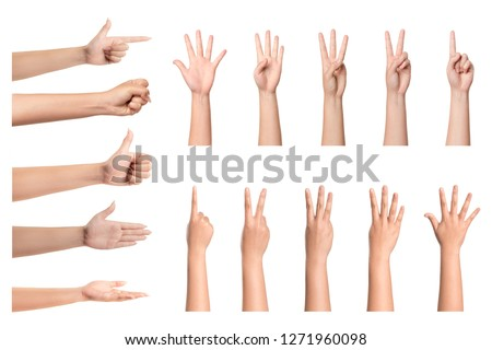 Set of woman hand isolated on white background.  #1271960098
