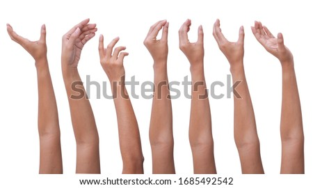 Set of woman hands isolated on white background. Сток-фото ©