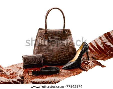 Set of women accessories which made of crocodile leather