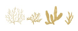 set of yellow corals. illustration of underwater marine organisms isolated on a white background.