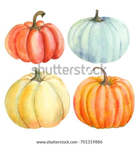 Set pumpkin, watercolor hand drawing