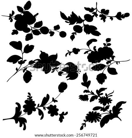 set silhouette black design plant flower on a  white background