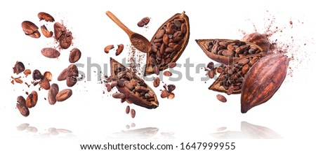Photo of  Set with A lot of cocoa pod and beans, cracked and whole isolated on a white background. Food levitation concept, flying in the air.