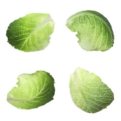 Set with fresh leaves of savoy cabbage on white background