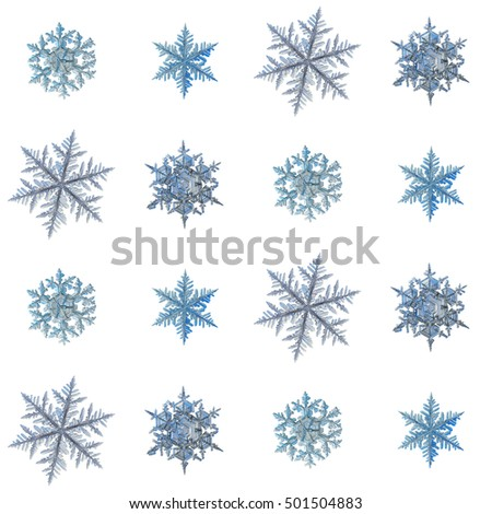 Set with snowflakes isolated on white background, arranged in square grid. This is macro photos of real snow crystals: large stellar dendrites with long, ornate arms and fine symmetry. #501504883