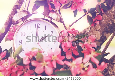 Set your clocks back in spring with this whimsical image of a clock surrounded by spring flowers set to 2 o clock! Extreme shallow depth of field with selective focus on clock.