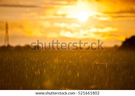 Setting sun #521661802