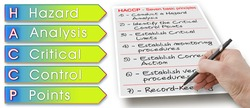 Seven basic principles about HACCP plans (Hazard Analysis and Critical Control Points) - Food Safety and Quality Control in food industry concept image