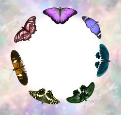 Seven Chakra Coloured Butterfly Healing Circle Border - 7 different species of butterfly arranged in a circle with a white centre for messages and pale coloured ethereal border frame