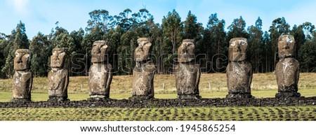 Seven moai at Ahu Akivi on Easter Island  Stok fotoğraf ©