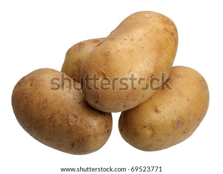Several brown potatoes on white background, isolated
