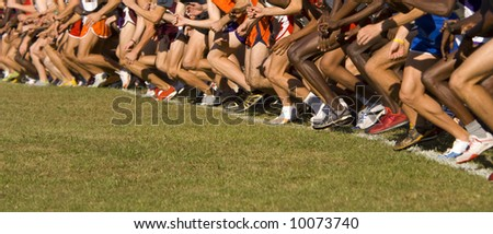 Several dozen atheletes at the starting line of a cross country race