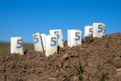 Several euro bills stuck in precious farmland. The demand for land is increasing worldwide and the purchase price for arable land has increased by an average of 187 percent over the past few years.