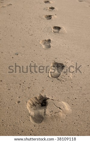 Several footprints in damp sand on beach