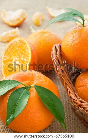Several Fresh tangerine oranges  on burlap