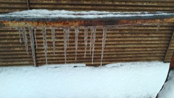 Several ice icicles hang from an iron pipe. A rusty iron pipe covered with seng, with icicles hanging from the pipe, white snow lies under the pipe.