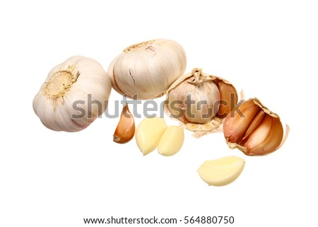 Several isolated garlic's bulbs and cloves on white background #564880750