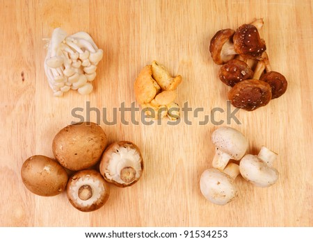 Several mushrooms against a wooden background (all eatable)