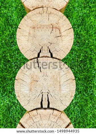 Several tree trunks. Cross section. Cross section of logs texture. Wood tree trunk texture, close-up on a background of green grass. Vertical