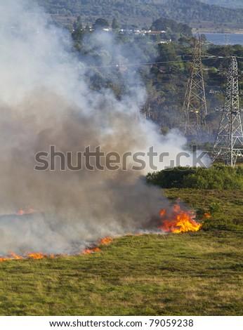 Severe heathland fire in Dorset, UK