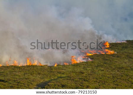 Severe heathland fire in Dorset, UK