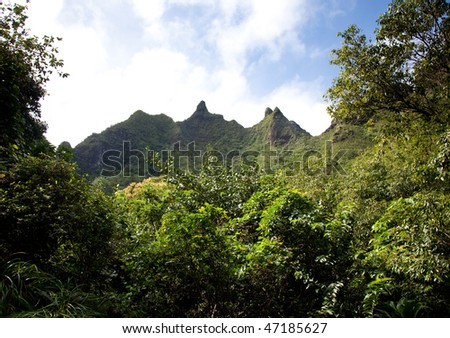Severe peaks on kauai surrounded by lush trees - stock photo
