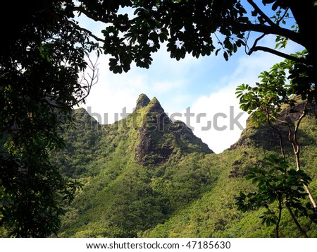 Severe peaks on kauai surrounded by lush trees