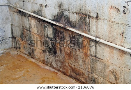 Severe water damage on a wall in a neglected basement. It\'s covered in dirt, cracks, mold and mildew.
