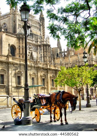 Seville horse