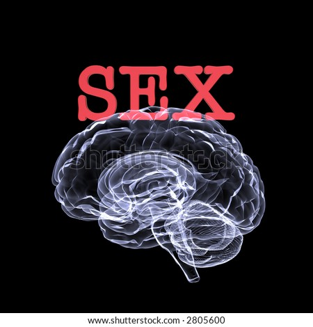 stock photo : Sex on the brain. X-Ray of a brain with the