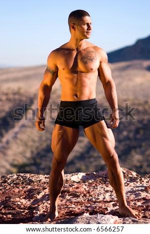 Sexy muscular man.
