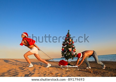 Sexy Santa pulling Christmas tree on a sled at the beach.  (concept: Tropical winter fun)