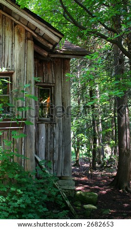 Shack found in woods by camp
