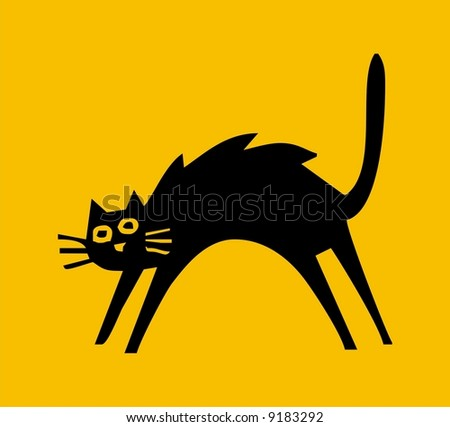 Shadow cat isolated on  coloured background