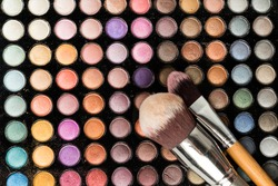 Shadow color palette with make up brushes