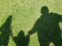 shadow of a family taken from the hands in the green pasture