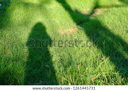 Shadow of a female standing on a green grass field with a tree and sun light in bright day  #1261445731