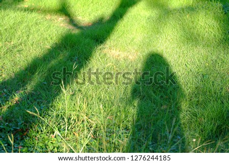 Shadow of a female standing on a green grass field with a tree and sun light in bright day  #1276244185
