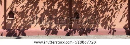 Shadow of leaves #518867728