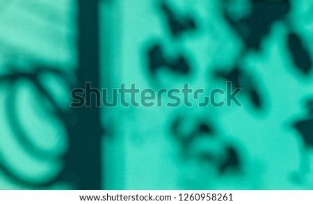 shadow of leaves and power lines On the green concrete wall . abstract background #1260958261